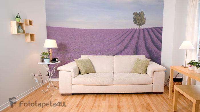 Fototapeta lateksowa w salonie Lawendowe Pole w Prowansji
